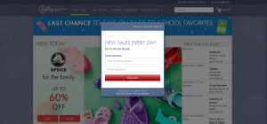 forced opt-in email form - why zulily failed to reach growth potential